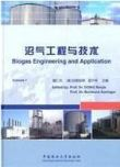 Biogas Engineering and Application-Volume 1