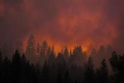 The sun sets on the Rim Fire near Buck Meadows, California, August 22, 2013. Courtesy of REUTERS/Max Whittaker.